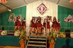 Schützenfest 2013 Vereine